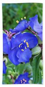 Tradescantia Blooming Beach Towel