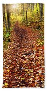Trail In Fall Forest Beach Towel