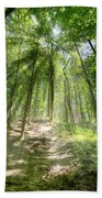 Trail In The Forest Beach Towel