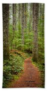 trail to Lower Lewis Falls Beach Towel