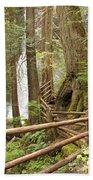 Trail To Waterfall Beach Towel