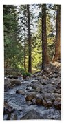 Tranquil Forest Beach Towel