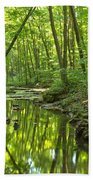 Tranquility In The Forest Beach Towel