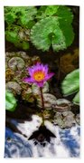 Tranquility - Lotus Flower Koi Pond By Sharon Cummings Beach Towel