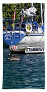 Transients Beach Towel