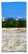 Trapper Creek And Mount Mckinley, Alaska Beach Towel