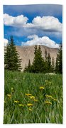 Trappers Lake Meadow Beach Towel