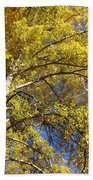 Tree 4 Beach Towel