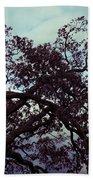 Tree Against Sky Beach Towel
