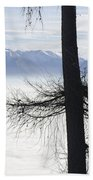 Tree And Fog Beach Towel