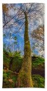 Tree And Rocks Beach Towel