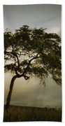 Tree And Stormy Sky Beach Towel
