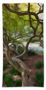 Tree At Norfolk Botanical Garden Beach Towel