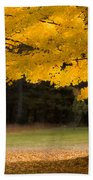 Tree Canopy Glowing In The Morning Sun Beach Sheet