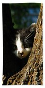 Tree Cat Beach Towel