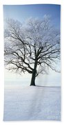 Tree Covered In Hoar Frost Beach Towel
