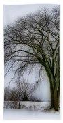 Tree Elder Beach Towel