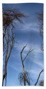 Tree Fingers Beach Towel