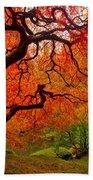 Tree Fire Beach Towel by Darren  White