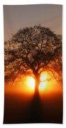 Tree Fog Sunrise Beach Towel
