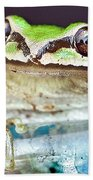 Tree Frog Beach Towel by Jean Noren