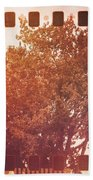 Tree Grunge Vintage Analog Film Beach Towel