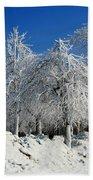 Tree Ice Beach Towel