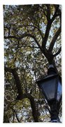 Tree In French Quarter Beach Towel