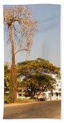 Tree In Goa Beach Towel