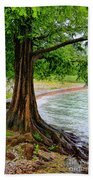 Tree In Paradise Beach Towel