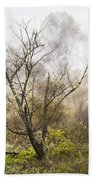 Tree In The Fog Beach Towel
