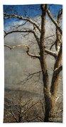 Tree In Winter Beach Towel by Lois Bryan