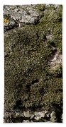 Tree Moss Beach Towel