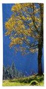 Tree Of Seasons Beach Towel