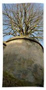 Tree On The Wall Beach Towel