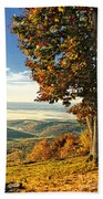 Tree Overlook Vista Landscape Beach Towel