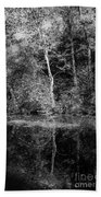 Tree Reflection In Chesapeake And Ohio Canal Beach Towel