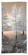 Tree Reflections Beach Towel by Jane Linders
