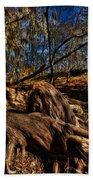 Tree Root Beach Towel