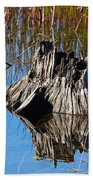 Tree Stump And Reeds Beach Towel