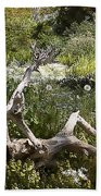 Tree Trunk In The Meadow Beach Towel
