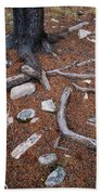 Tree Trunk Roots And Rocks Beach Towel