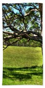 Tree With A Swing Beach Towel
