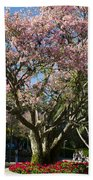 Tree With Pink Flowers Beach Towel