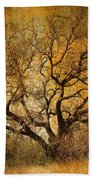 Tree Without Shade Beach Towel