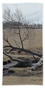 Trees And Early Spring Creek Beach Towel