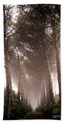 Trees And Mist Beach Towel