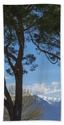 Trees And Snow-capped Mountain Beach Towel
