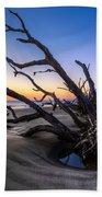 Trees At Driftwood Beach Beach Towel by Debra and Dave Vanderlaan