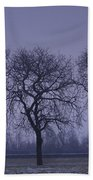 Trees At Night Beach Towel